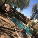Mesh-Pool-Fence-043