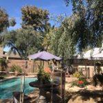 Mesh-Pool-Fence-044